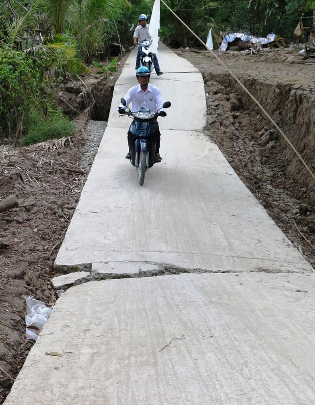 Sụt lún kinh hoàng vùng ngọt hoá Cà Mau ảnh 5