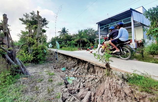 Sụt lún kinh hoàng vùng ngọt hoá Cà Mau ảnh 3