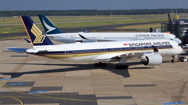 """Singapore - Hồng Kông tái khởi động """"bong bóng du lịch"""", vé máy bay hết nhanh như gió ảnh 1"""