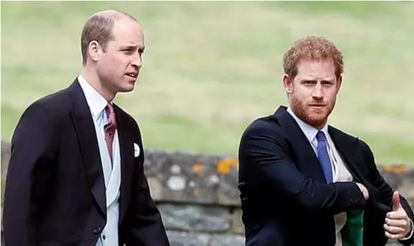 """Chấm dứt sự im lặng: Hoàng tử William và Harry đã trò chuyện, Kate là """"người hòa giải"""" ảnh 1"""