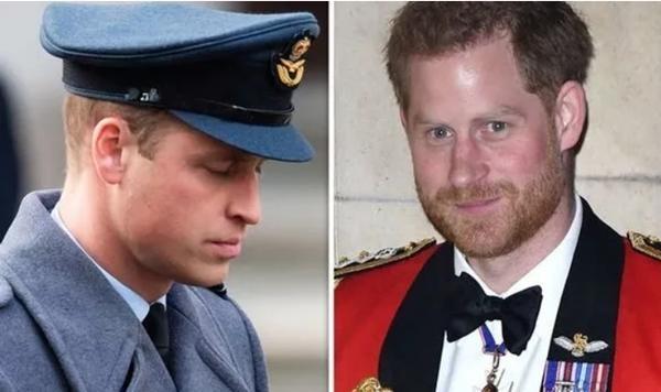 Anh em xa cách: Có người sẽ đứng xen giữa William - Harry trong tang lễ Hoàng thân Philip? ảnh 3