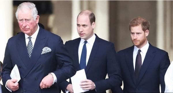 Vắng mặt Meghan, nhà William - Harry họp gia đình, mục đích là gì, William yêu cầu ra sao? ảnh 1