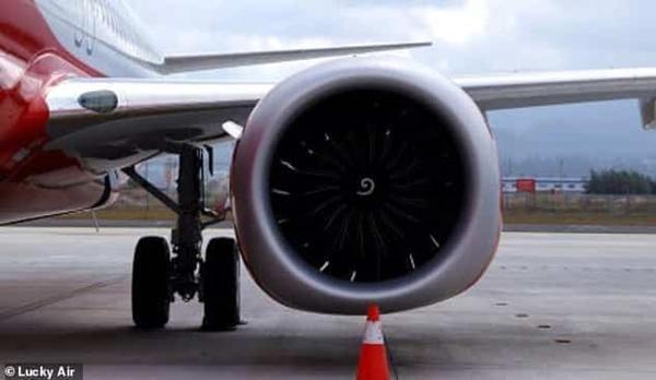 Hành khách ném đồng xu vào động cơ máy bay để cầu may mắn, khiến cả chuyến bay bị hoãn ảnh 3