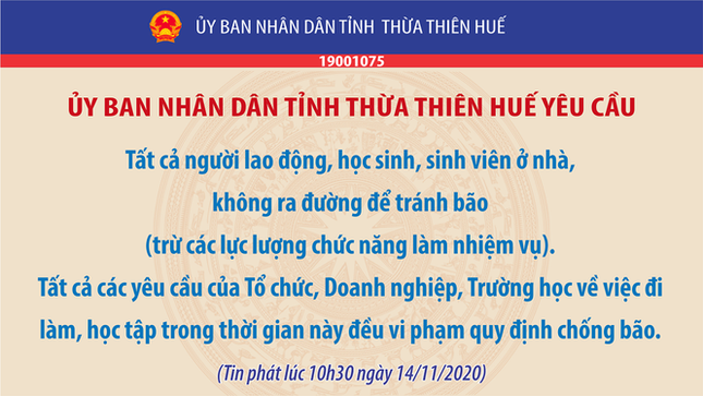 Thừa Thiên - Huế: Trạm xe buýt bị hư hại, cây xà cừ trăm tuổi bật gốc vì bão số 13 ảnh 1