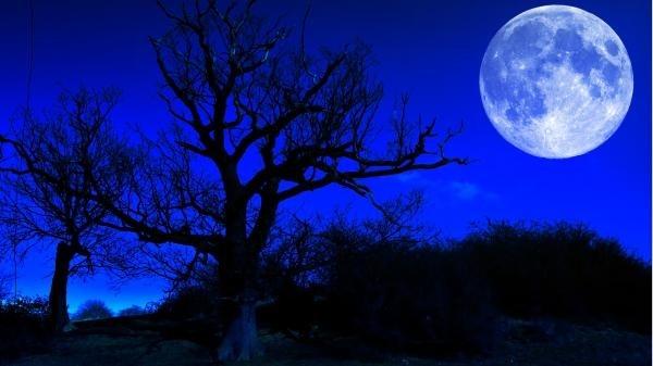 Vào đúng lễ Halloween năm nay, bạn sẽ thấy một điều đặc biệt và hiếm hoi ở trên bầu trời ảnh 3