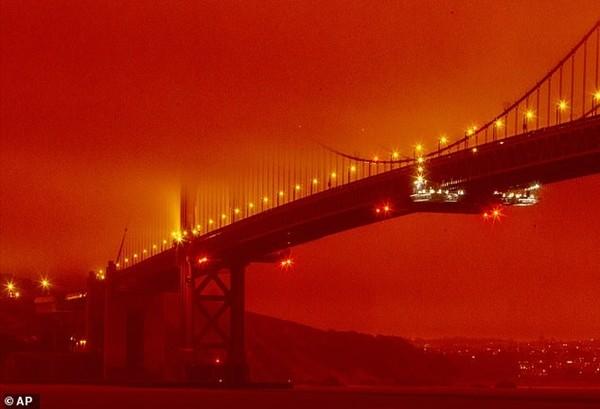 Chụp ảnh với bầu trời màu cam do cháy rừng để bán bộ váy màu cam: Vô duyên hay nghệ thuật? ảnh 2
