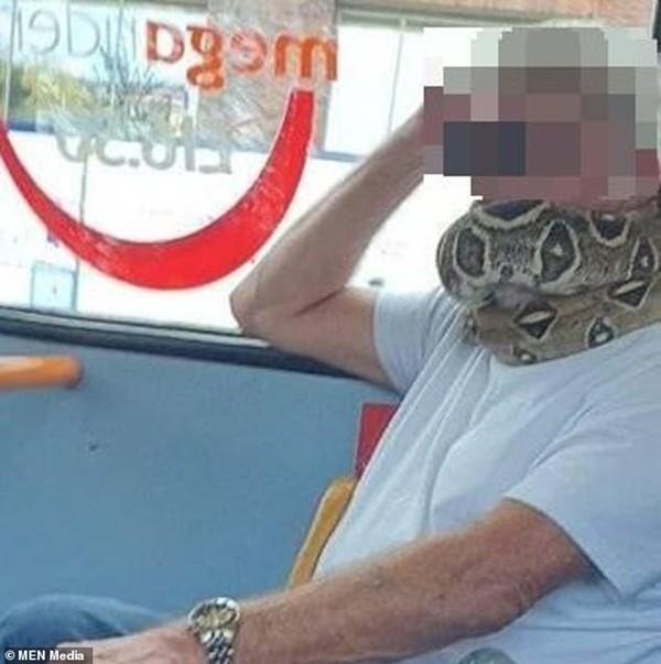Dùng khăn thay khẩu trang xưa rồi, có người quấn cả rắn thay khẩu trang trên xe buýt này ảnh 1