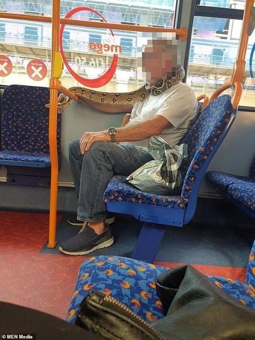 Dùng khăn thay khẩu trang xưa rồi, có người quấn cả rắn thay khẩu trang trên xe buýt này ảnh 2