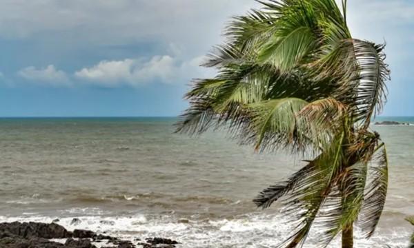 Mẹ dẫn con ra biển chụp selfie bất chấp cảnh báo sóng lớn, em bé 2,5 tuổi bị sóng cuốn đi ảnh 1