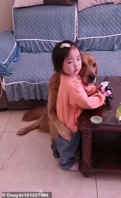 Chú chó bảo vệ cô bé bị mẹ mắng dễ thương thế này, tại sao lại bị cộng đồng mạng nghi ngờ? ảnh 5