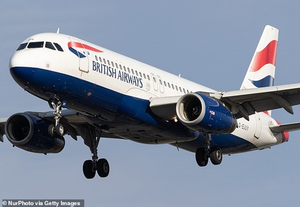 Cơ phó của hãng hàng không Anh ngất xỉu giữa chuyến bay, hành khách lo bị nhiễm COVID-19 ảnh 1