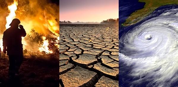 """Bill Gates đã cảnh báo về đại dịch từ năm 2015, giờ ông lại dự đoán gì về """"thảm họa tiếp theo""""? ảnh 3"""