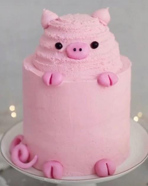 Đặt bạn làm bánh sinh nhật hình heo con, khi nhận được thì khóc thét vì… không nhận ra con gì ảnh 1