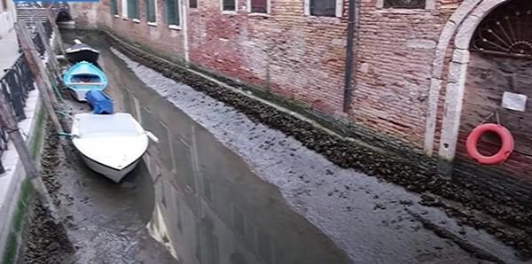 Người dân Venice giật mình khi thấy kênh đào khô queo sau một đêm, chuyện gì đang xảy ra? ảnh 3
