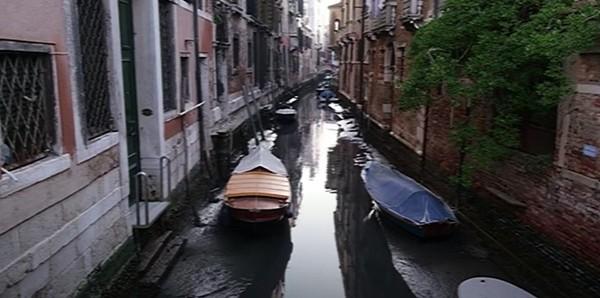 Người dân Venice giật mình khi thấy kênh đào khô queo sau một đêm, chuyện gì đang xảy ra? ảnh 4
