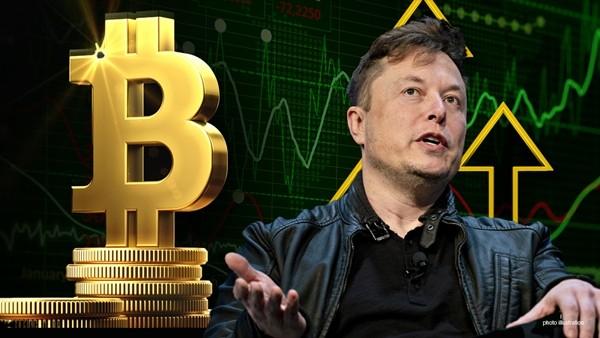 Tin vào tài khoản giả mạo tỷ phú Elon Musk, một người bị lừa mất trắng 13 tỷ đồng ảnh 1