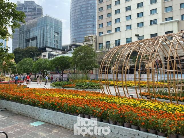 Đường hoa Nguyễn Huệ đẹp rực rỡ đón Tết Tân Sửu, đảm bảo quy tắc an toàn với du khách đến thăm ảnh 6