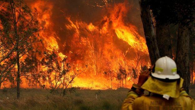 Nước Úc vật lộn với các vụ cháy rừng tồi tệ nhất trong 1 thập kỷ ảnh 1