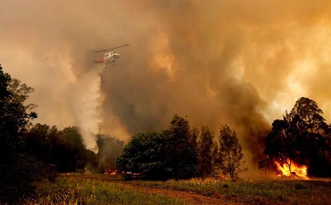 Nước Úc vật lộn với các vụ cháy rừng tồi tệ nhất trong 1 thập kỷ ảnh 5
