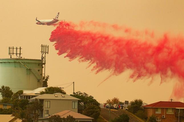 Nước Úc vật lộn với các vụ cháy rừng tồi tệ nhất trong 1 thập kỷ ảnh 3