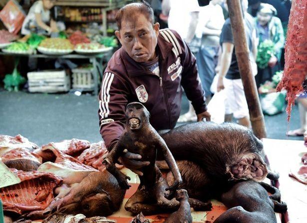 Chợ thịt tươi nổi tiếng ở Indonesia vẫn tấp nập bất chấp đại dịch COVID-19 ảnh 5