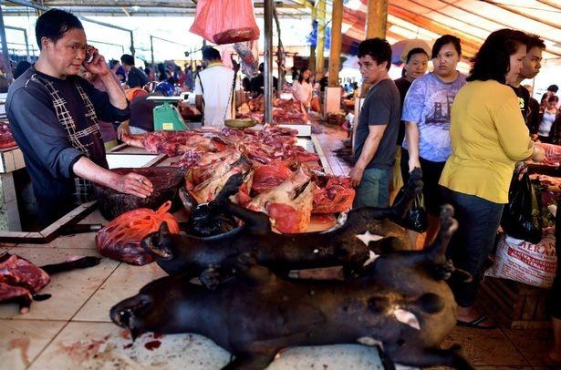 Chợ thịt tươi nổi tiếng ở Indonesia vẫn tấp nập bất chấp đại dịch COVID-19 ảnh 2