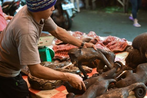 Chợ thịt tươi nổi tiếng ở Indonesia vẫn tấp nập bất chấp đại dịch COVID-19 ảnh 6