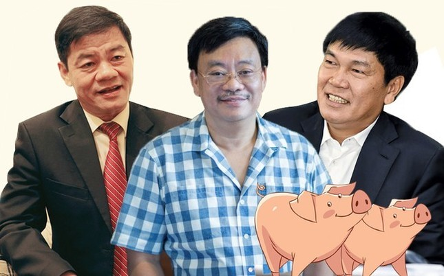 Quay về làm nông, tỷ phú USD Việt Nam mở trại nuôi lợn ảnh 1