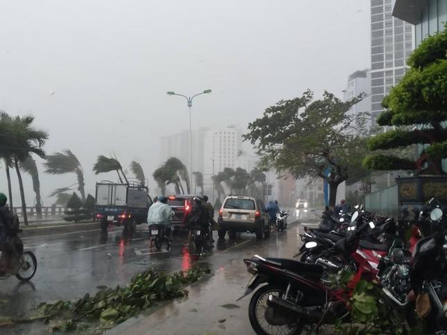 Bão đổ bộ vào Khánh Hòa, TP Nha Trang mưa to, gió lớn, nhiều nơi mất điện ảnh 6