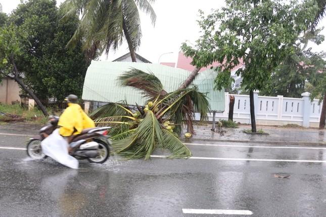 Bão đổ bộ vào Khánh Hòa, TP Nha Trang mưa to, gió lớn, nhiều nơi mất điện ảnh 5
