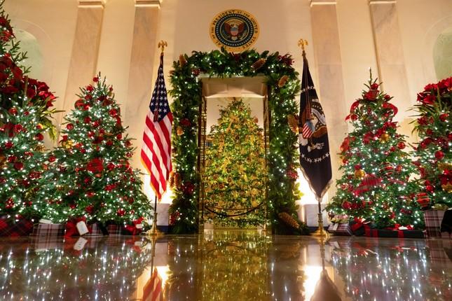 Nhà Trắng trang hoàng lộng lẫy đón Giáng sinh 2020 ảnh 6