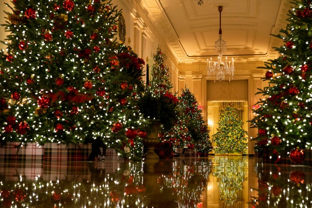 Nhà Trắng trang hoàng lộng lẫy đón Giáng sinh 2020 ảnh 5