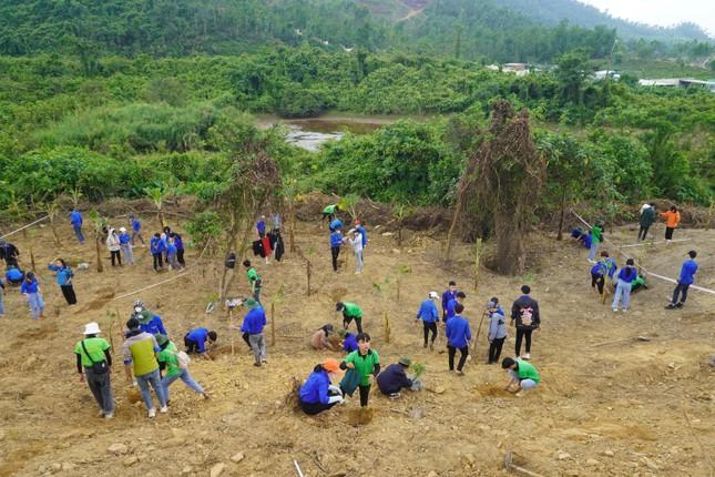 Sinh viên Đà Nẵng trồng cây xanh gây dựng Công viên khoa học ảnh 2