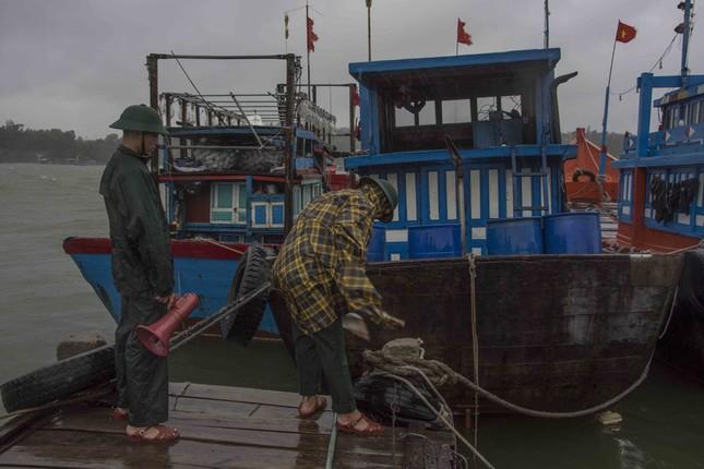 Nhiều tàu cá Quảng Ngãi chạy vào âu thuyền Trường Sa tránh bão số 5 ảnh 1