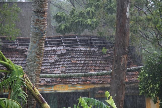Sau bão số 5: Quảng Ngãi hư hại hơn 400 nhà, sóng đánh sập kè ở Bình Định ảnh 2
