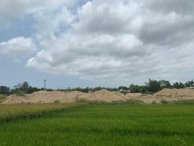 San lấp trái phép ruộng lúa của dân, doanh nghiệp bị phạt 300 triệu đồng ảnh 4