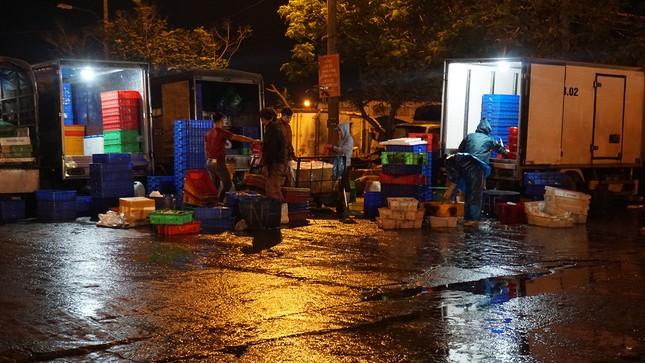 Trắng đêm mưu sinh giữa giá rét ở cảng cá lớn nhất miền Trung ảnh 9