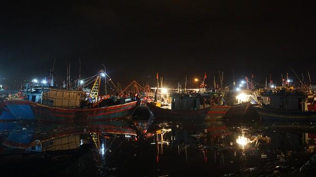 Trắng đêm mưu sinh giữa giá rét ở cảng cá lớn nhất miền Trung ảnh 1