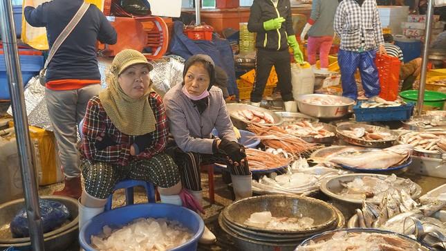 Trắng đêm mưu sinh giữa giá rét ở cảng cá lớn nhất miền Trung ảnh 6