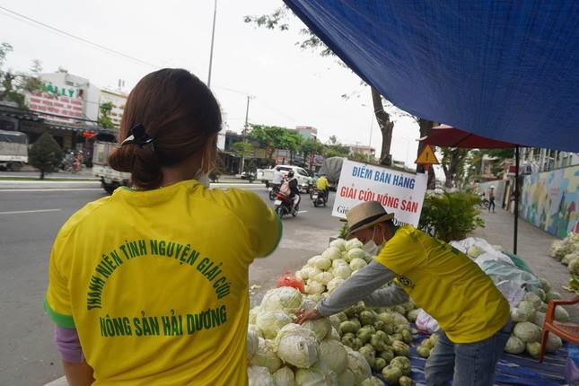 Tình nguyện viên Đà Nẵng giải cứu hàng trăm tấn nông sản Hải Dương ảnh 1