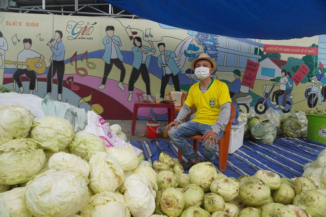 Tình nguyện viên Đà Nẵng giải cứu hàng trăm tấn nông sản Hải Dương ảnh 3