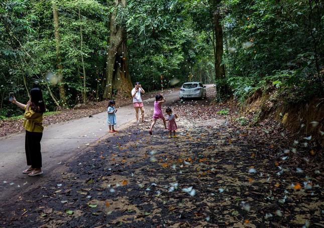 Điểm du lịch dịp nghỉ lễ gần Hà Nội: Săn bướm ở Cúc Phương, ngắm trọn đất trời ở Hang Múa ảnh 6