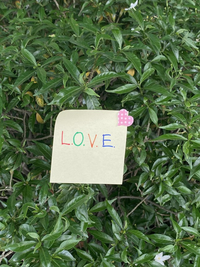 """Sơn Tùng nói về tình yêu, Thiều Bảo Trâm ngay lập tức đăng 43 tấm ảnh """"LOVE"""" ngọt ngào ảnh 3"""