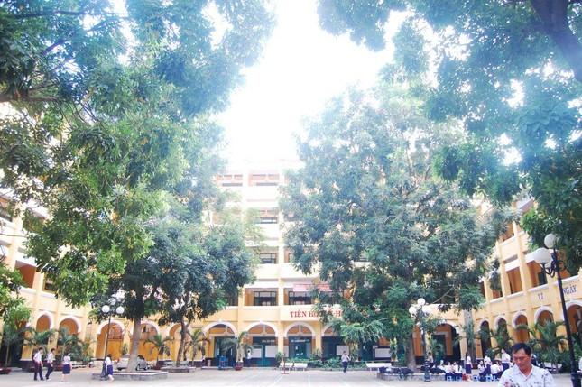Vụ cây đổ khiến học sinh tử vong: Nguy cơ tiềm ẩn từ cây tuổi đời lâu năm tại các trường ảnh 10