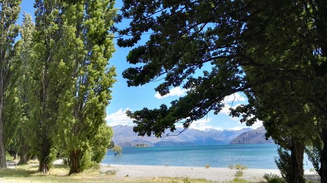 """Bài dự thi cuộc thi """"New Zealand - Bật mí trăm điều thú vị"""": Mùa Hè thiên đường ở Auckland ảnh 4"""