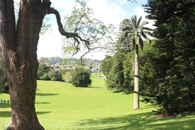 """Bài dự thi """"New Zealand - Bật mí trăm điều thú vị"""": Tháng 10 - mùa cỏ nở hoa và ấn tượng New Zealand của tớ ảnh 4"""