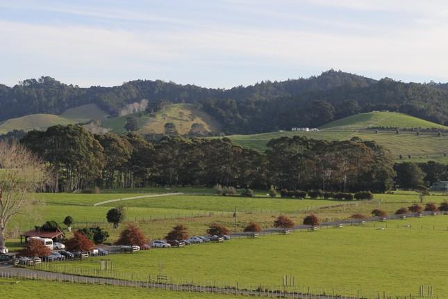 """Bài dự thi """"New Zealand - Bật mí trăm điều thú vị"""": Tháng 10 - mùa cỏ nở hoa và ấn tượng New Zealand của tớ ảnh 2"""