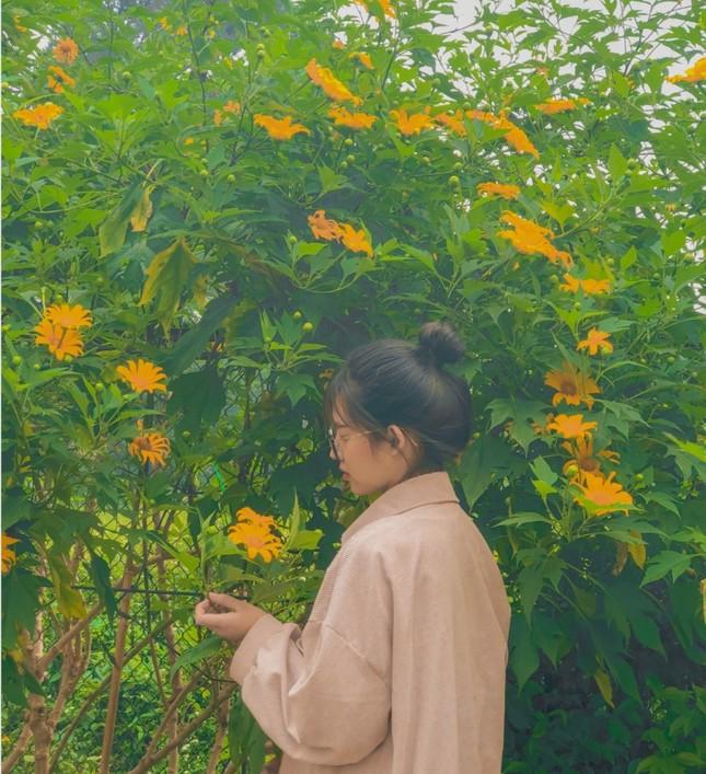 """Học viện Nông nghiệp Việt Nam sở hữu không gian tràn ngập sắc hoa, tha hồ """"sống ảo"""" ảnh 2"""