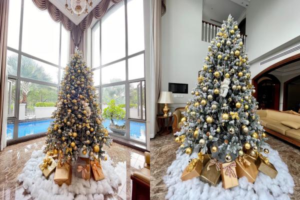 Sao Việt nô nức khoe ảnh trang hoàng nhà cửa lung linh chào đón Giáng sinh 2020 ảnh 2