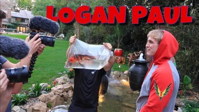 YouTuber nổi tiếng Jake Paul bị chỉ trích, NTN Vlogs bỗng dưng bị dân mạng réo tên ảnh 5